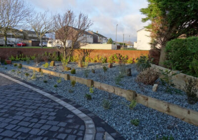 tm_egremont terraced garden with young plants